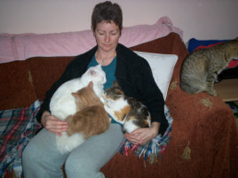 Sharon & cats photo